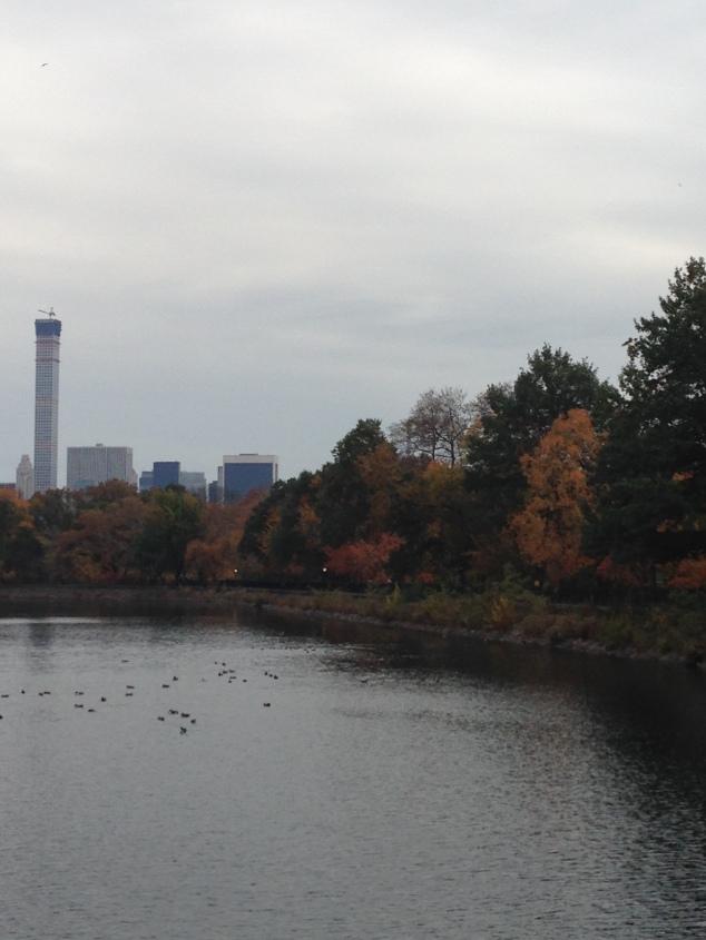 2014-11-16 14.42.48
